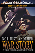 Not Just Another War Story by Wayne MacDowell